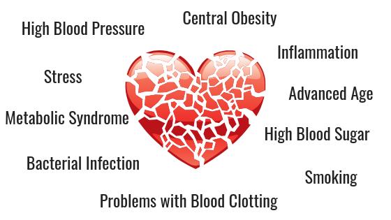 CAUSES OF HEART DISEASE INSULEAN