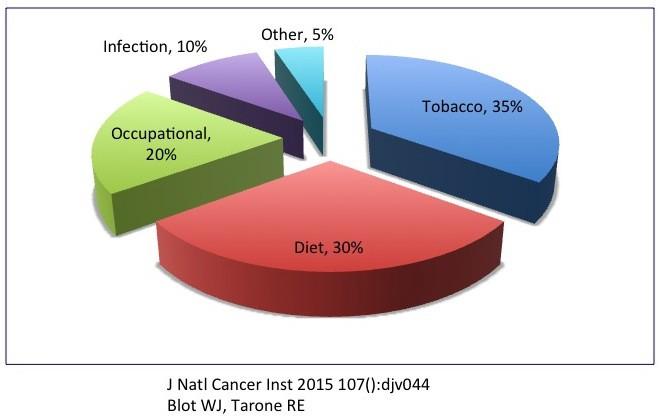 CANCER | Risk Factors | INSULEAN